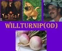 WillTurnip-008.jpg