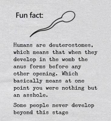 BDB4ADD6-001A-471D-97EC-A5F0A615FF52.jpeg